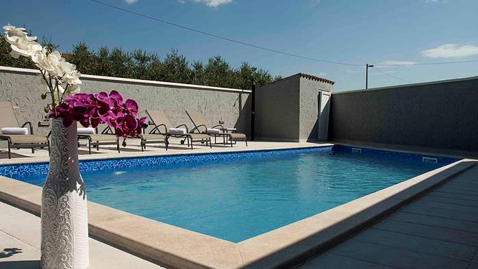 Villa near Porec with private swimming pool, WiFi, fireplace, 3