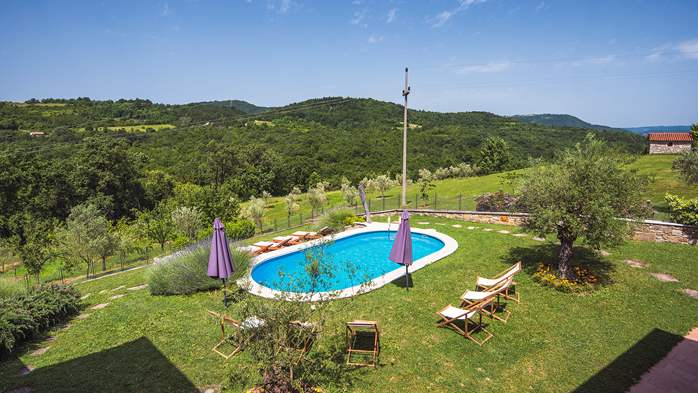 Traditional Istrian villa for 12 persons with private pool, 5