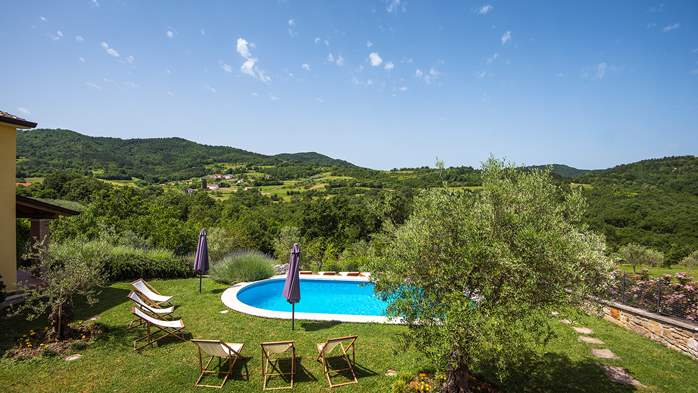 Traditional Istrian villa for 12 persons with private pool, 4