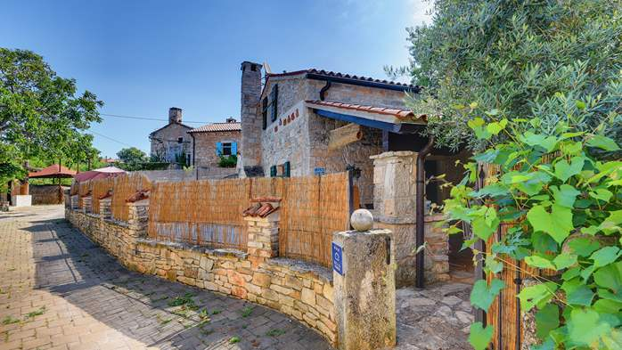 Beautiful stone house with swimming pool and terrace for 3 pax, 8