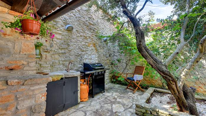 Beautiful stone house with swimming pool and terrace for 3 pax, 6