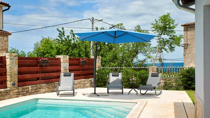 Charming villa in the heart of Istria with private pool, 5