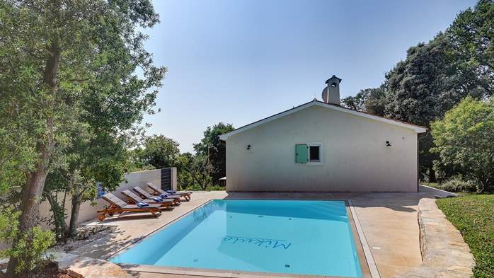 Lovely villa with pool, surrounded by greenery, for 12 persons, 5