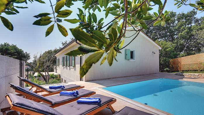 Lovely villa with pool, surrounded by greenery, for 12 persons, 2