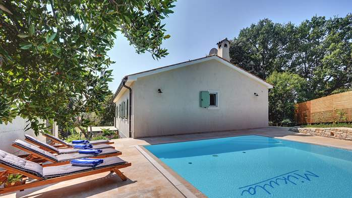 Lovely villa with pool, surrounded by greenery, for 12 persons, 7