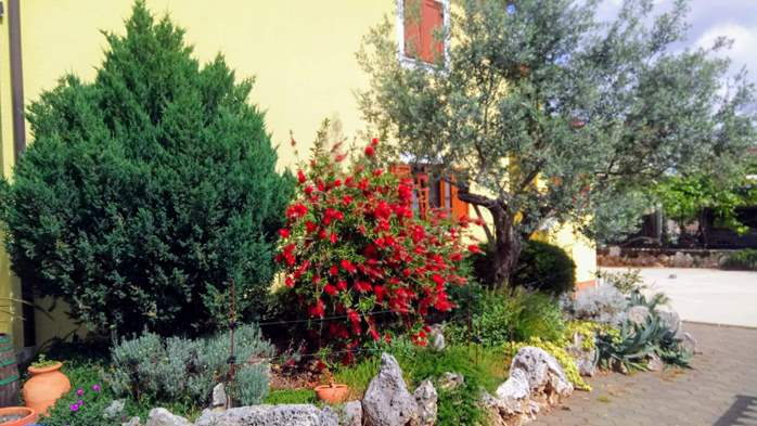 Private house in Pula offers comfortable accommodation, 22