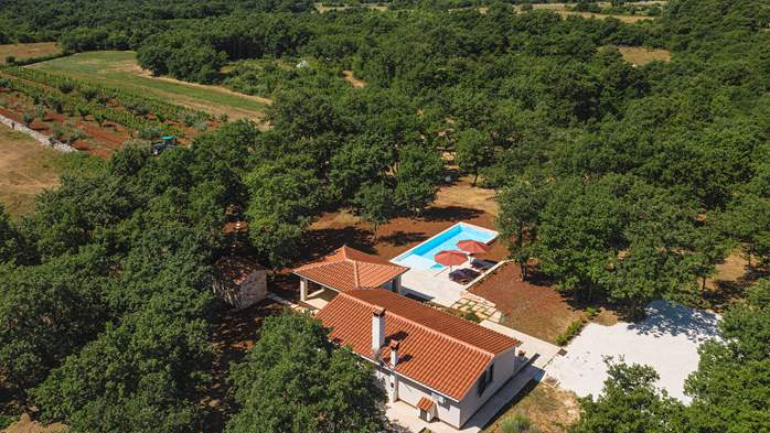 Villa with private pool for 4 persons, on a spacious property, 6