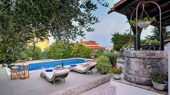 Villa in Ližnjan with private pool, sun terrace and fenced garden, 3