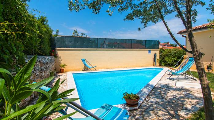 Villa in Ližnjan with private pool, can host up to 13 persons, 6