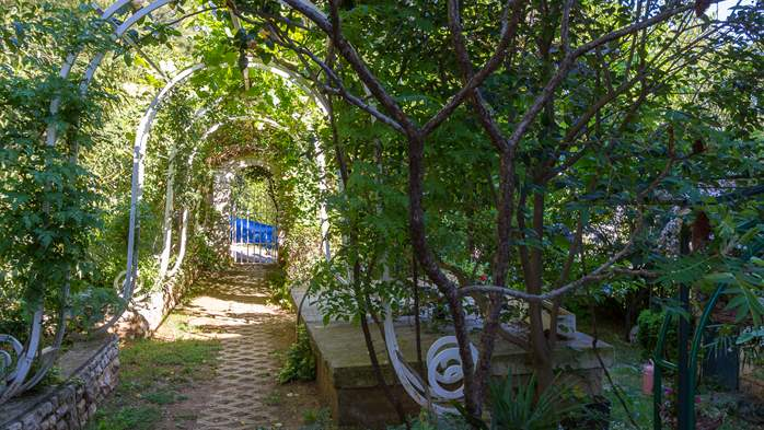 Nice house surrounded by greenery offers accommodation in Pula, 16