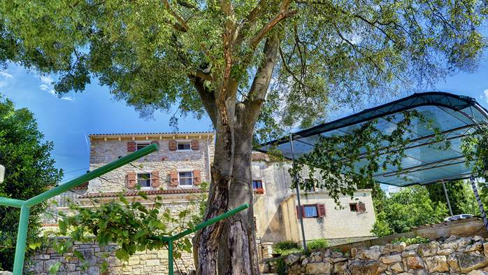 Traditional istrian stone villa with private pool and terrace, 16