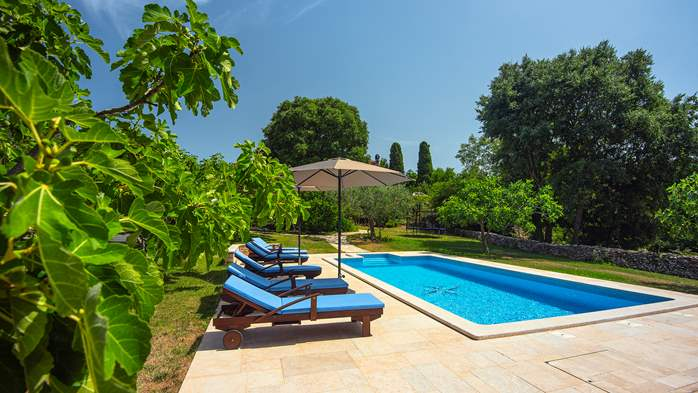 Traditional istrian stone villa with private pool and garden, 14