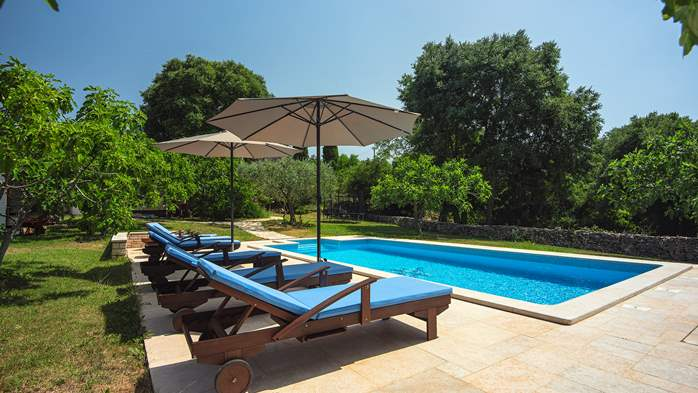Traditional istrian stone villa with private pool and garden, 2
