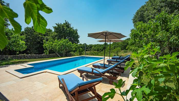 Traditional istrian stone villa with private pool and garden, 3