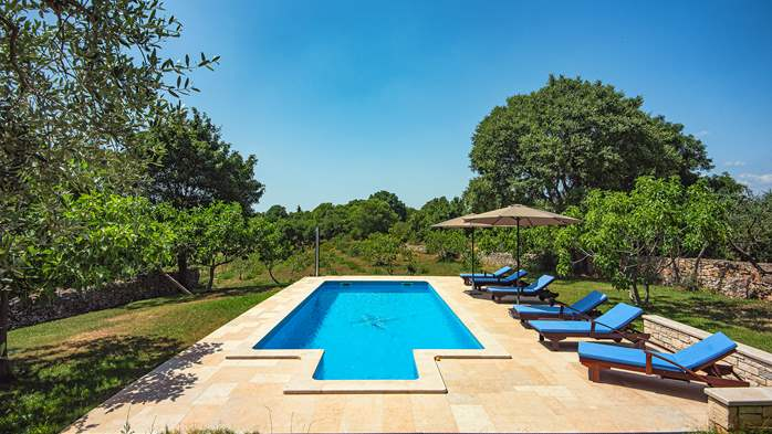 Traditional istrian stone villa with private pool and garden, 4