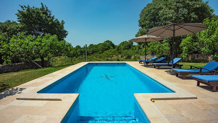 Traditional istrian stone villa with private pool and garden, 5