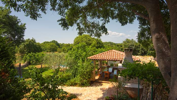Traditional istrian stone villa with private pool and garden, 8