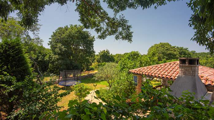 Traditional istrian stone villa with private pool and garden, 9