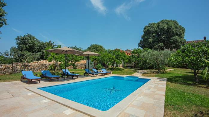 Traditional istrian stone villa with private pool and garden, 6