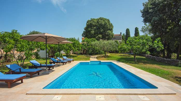 Traditional istrian stone villa with private pool and garden, 7