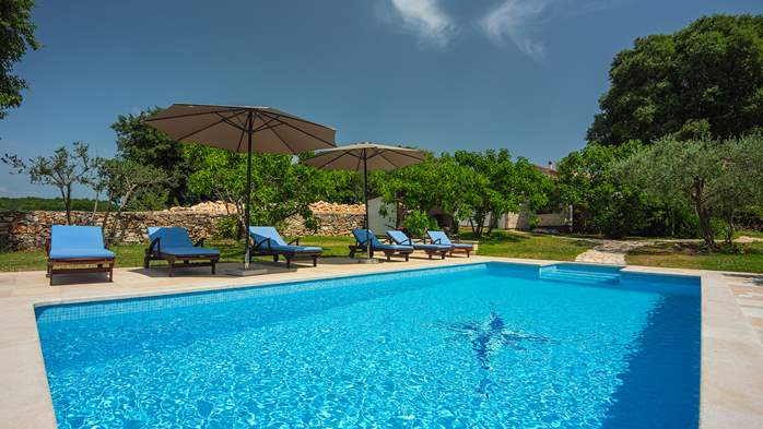 Traditional istrian stone villa with private pool and garden, 1