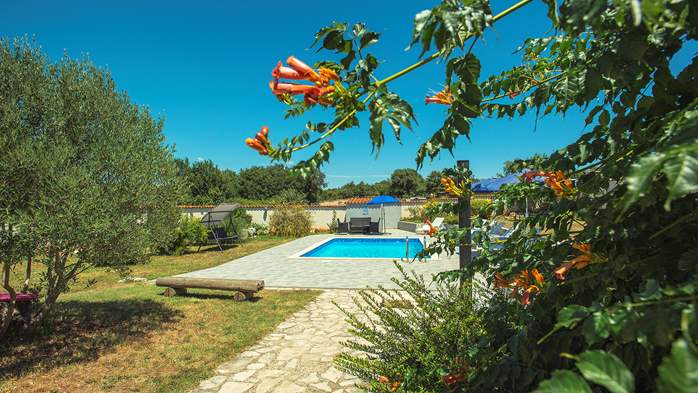 Villa with private pool, decorated in traditional Istrian style, 7