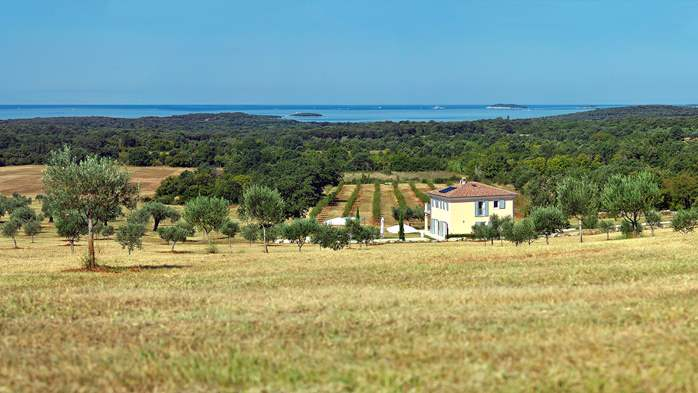 Attractive villa surrounded by olive groves, 1km from the sea, 1