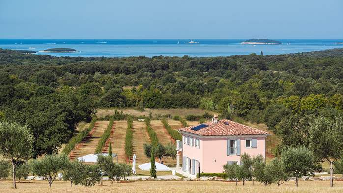 Attractive villa surrounded by olive groves, 1km from the sea, 3