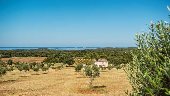 Attractive villa surrounded by olive groves, 1km from the sea, 15