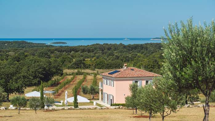 Attractive villa surrounded by olive groves, 1km from the sea, 2