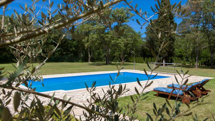 Completly fenced villa with pool, 6 bedrooms, billiards, WiFi, 19