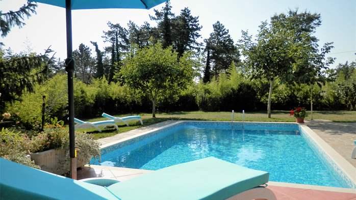 Villa with private pool, sauna, sun terrace, in central Istria, 1