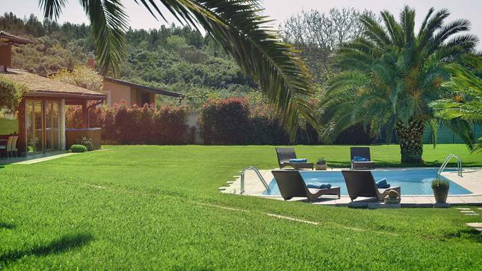 Villa in Pomer, private pool with whirlpool, big lawn, volleyball, 5