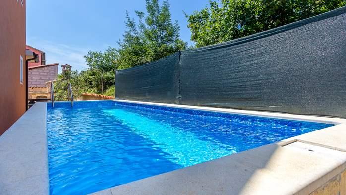 Comfortable accommodation for 12 people, house with pool, Ližnjan, 2