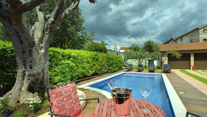 Charming villa with private pool for 6+2 in Šišan, garage, WIFI, 6