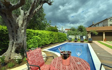 Charming villa with private pool for 6+2 in Šišan, garage, WIFI