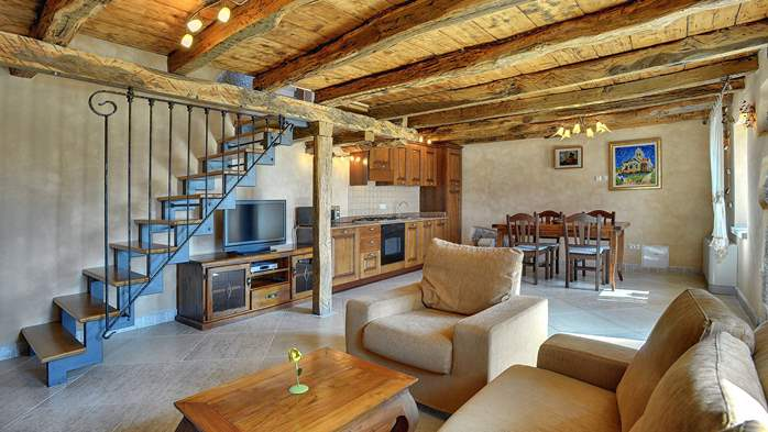 Rustic villa with pool within the borders of the Učka Nature Park, 41