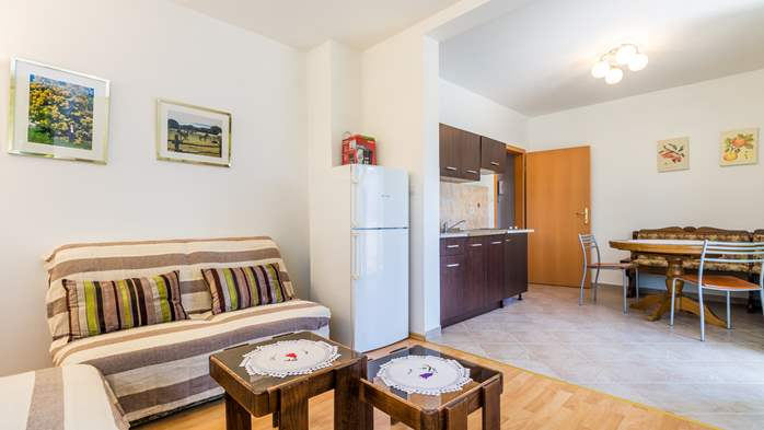 Nicely decorated apartment in Valbandon can host up to 5 persons, 5