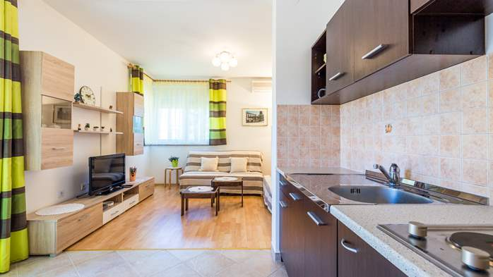 Nicely decorated apartment in Valbandon can host up to 5 persons, 3