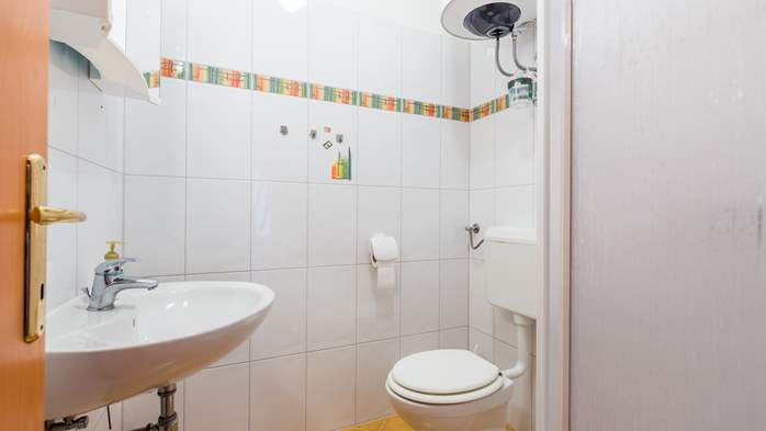 Nicely decorated apartment in Valbandon can host up to 5 persons, 13