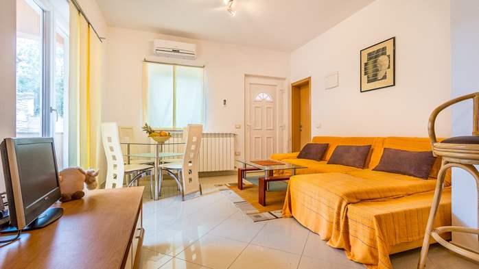 Comfortable accommodation for 12 people, house with pool, Ližnjan, 10