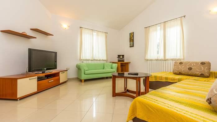 Comfortable accommodation for 12 people, house with pool, Ližnjan, 18