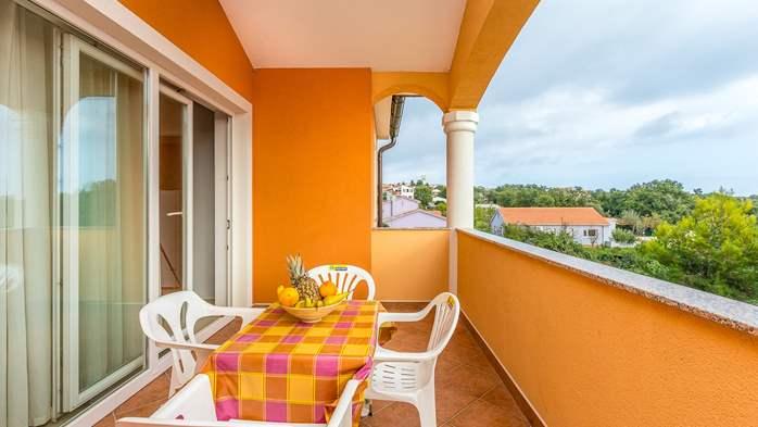 Comfortable accommodation for 12 people, house with pool, Ližnjan, 25