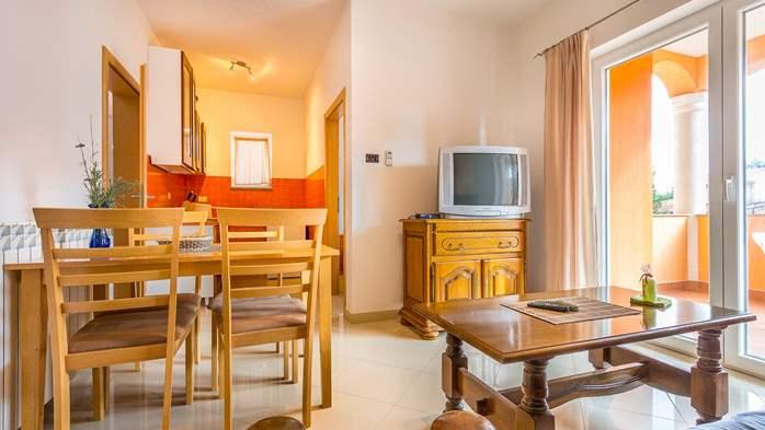 Comfortable accommodation for 12 people, house with pool, Ližnjan, 28
