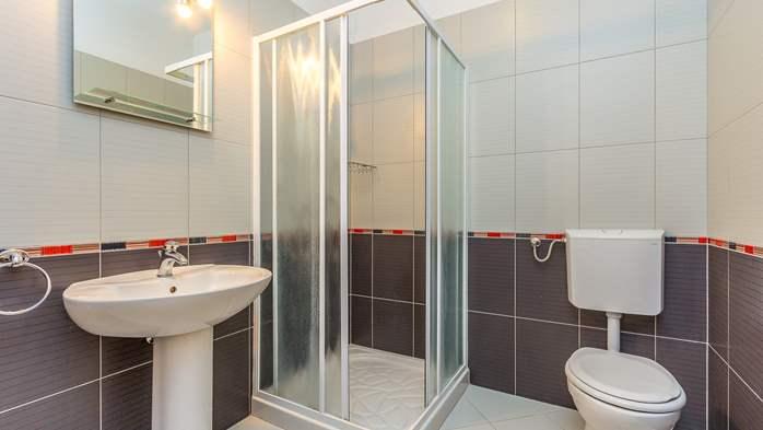 Comfortable accommodation for 12 people, house with pool, Ližnjan, 33