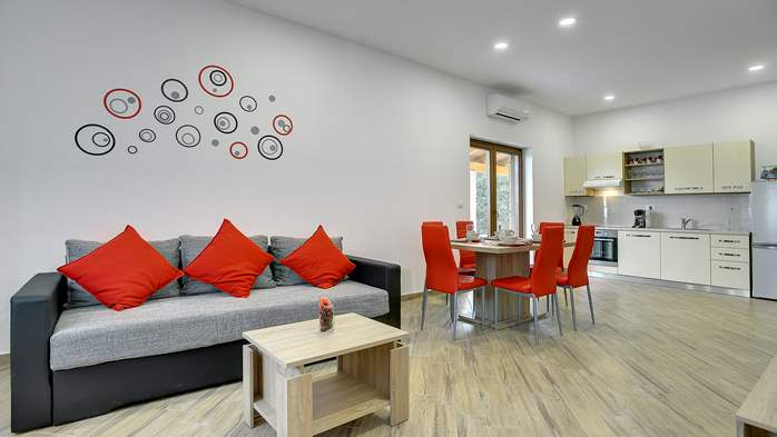 Newly built house in Ližnjan with a private pool and free WiFi, 14