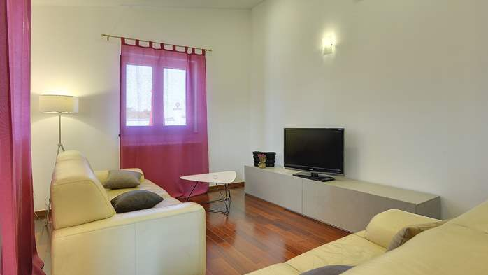 Spacious villa in Pula with pool and jacuzzi for 14 persons, 41