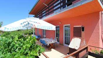 Apartment for 8-9 persons with pleasant ambience, private balcony, 17