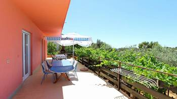 Apartment for 8-9 persons with pleasant ambience, private balcony, 18