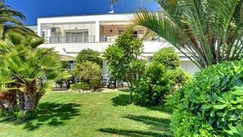 Nice studio apartment with sea view and a beautiful lawn, 13